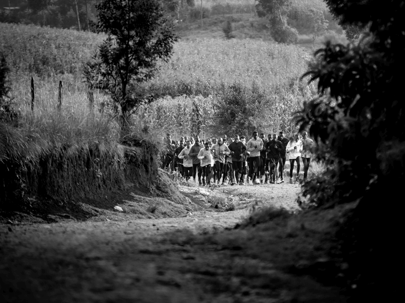 Picture of runners during long run